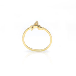 Roman Initial Ring